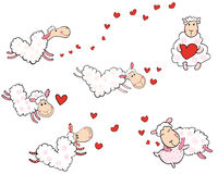 Love sheep in the shape of hearts Stock Photos