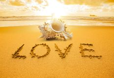 Love shell royalty free stock photography
