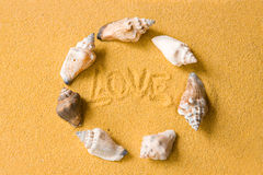 Love Shells On The Beach Stock Photos