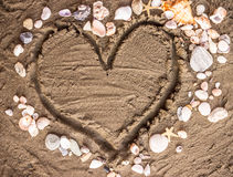 Love and shells royalty free stock photography