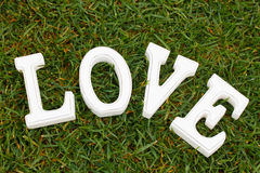 Love sign in grass Royalty Free Stock Images