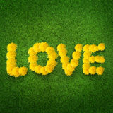 Love made from dandelions Royalty Free Stock Images