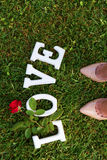 Love sign with rose Royalty Free Stock Photos