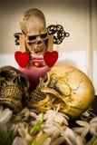 Love by skull Royalty Free Stock Photo