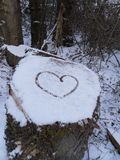 Love in snow Stock Photography