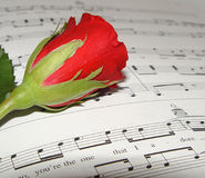 Love song II. Red rose resting on music Royalty Free Stock Photos