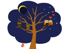 Love and spat. Two lovers owls and two quarreled owls sitting on the tree on a background of the night sky and a lunar eclipse Royalty Free Stock Photo
