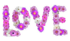 Love Spelled in Flowers. The word Love spelled out in pink and white flowers Stock Image