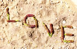 Love Spelled Out in Nature Stock Photography