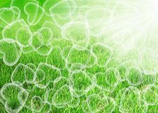 Love spring background stock photography