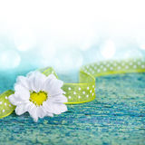 Beautiful heart shaped daisy flower on old wood Royalty Free Stock Photography
