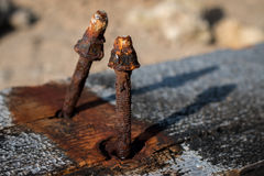 Love story. A love story begin between two rusty nails Royalty Free Stock Image