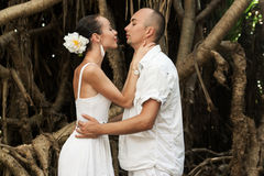 Love story in jungle Stock Photos
