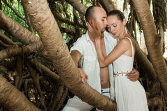 Love story in jungle Royalty Free Stock Images