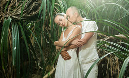 Love story in jungle Royalty Free Stock Photo