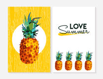 Love summer set with color pineapple fruit element Royalty Free Stock Photo