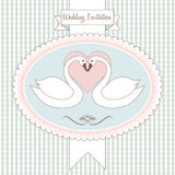 Love swan. wedding invitation Stock Photo