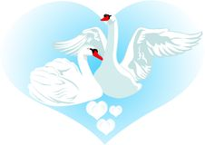 Love and swans Stock Photos