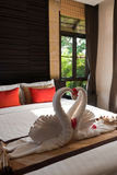 Love Swans in a Modern Hotel in Thailand Royalty Free Stock Photography