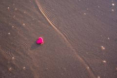 Love symbol of heart on the sea beach Royalty Free Stock Photography