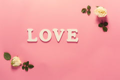 Love theme with white rose frame. On a pink background Royalty Free Stock Images