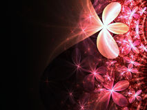 Love themed pink fractal flowers Stock Photography