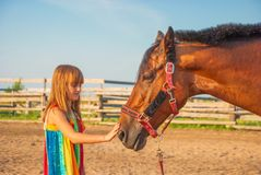 Love to the animals. Pretty thoughtful girl caresses the horse tenderly Stock Photos