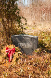 Love tombstone in an abandoned cemetary. A granite tombstone with the name Love inscribed in an overgrown abandoned cemetery in fall leaves Royalty Free Stock Photos