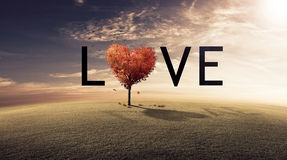 Love Tree. Red tree heart spelling the word LOVE Royalty Free Stock Images