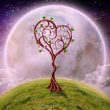 Love Tree. The beautiful Love Tree on a romantic background Stock Photography