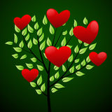 Love tree concept with red hearts Stock Photography