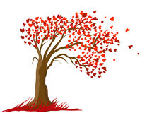 Free Love Tree Design Stock Image - 12351781