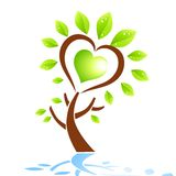Love Tree Element Stock Photos