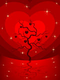 Love tree having heart shapes. Royalty Free Stock Photography