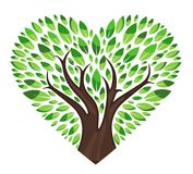 Love tree with leaves. A  drawing represents people love tree isolated in white Stock Photo