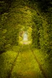 Love tunnel in Romania Stock Image