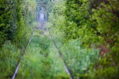 Love tunnel in Romania. View of a railroad track in the woods that form a tunnel around it, tourist attraction near Caransebes, Romania, also known as the love Royalty Free Stock Photo