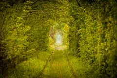 Love tunnel in Romania. View of a railroad track in the woods that form a tunnel around it, tourist attraction near Caransebes, Romania, also known as the love Royalty Free Stock Photos