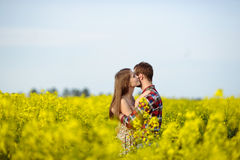 Love for two. On a fine spring meadow Stock Photo