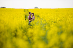 Love for two. On a fine spring meadow Stock Images