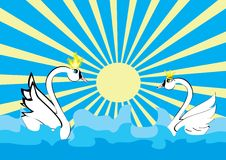 Love of two swans and the sea Stock Photography