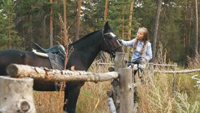 Love and understanding between girl and horse. Redhead girl and brown horse in the forest. stock video footage