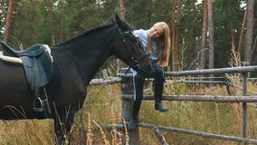 Love and understanding between girl and horse. Redhead girl and brown horse in the forest. stock footage