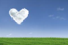 Love valentine day field Stock Photo