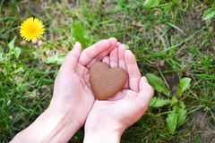 Love and Valentine`s Day concept. male hand in shape of heart on green grass field background royalty free stock images