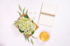 Love or valentine`s day concept. Spring or summer background.  Royalty Free Stock Images