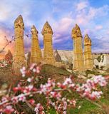Love valley near Goreme, Turkey Royalty Free Stock Photos