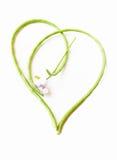 Love Green Royalty Free Stock Photos