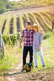 Love in vineyard Royalty Free Stock Image