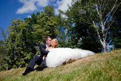 Love wedding coupl Royalty Free Stock Images